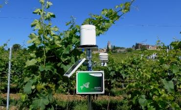 Stazioni agro-meteorologiche_3