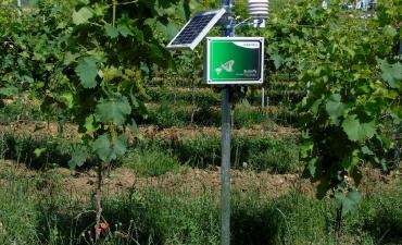 Stazioni agro-meteorologiche_5