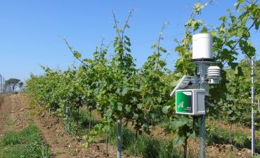 Stazioni agro-meteorologiche_6