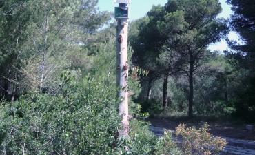 Sensore allarme incendi boschivi_14