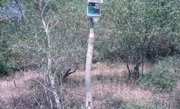Sensore allarme incendi boschivi_16
