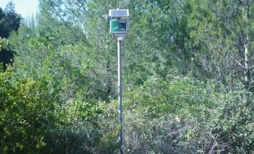 Sensore allarme incendi boschivi_1