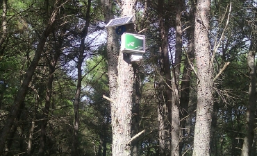 Sensore allarme incendi boschivi_8
