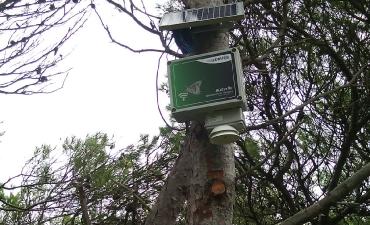Sensore allarme incendi boschivi_9