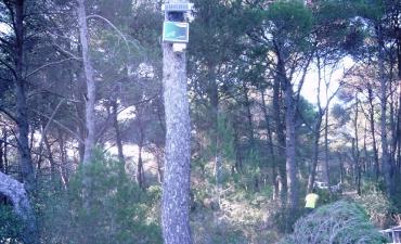 Sensore allarme incendi boschivi_13