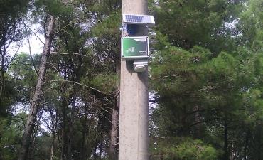 Sensore allarme incendi boschivi_4