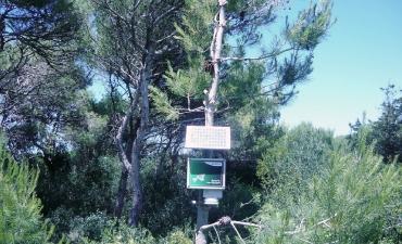 Sensore allarme incendi boschivi_5