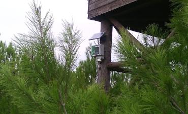 Sensore allarme incendi boschivi_7